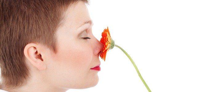 הסרת שיער מהאף לצמיתות